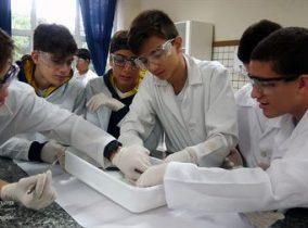 Xaverianos aprendem Anatomia por meio da dissecação