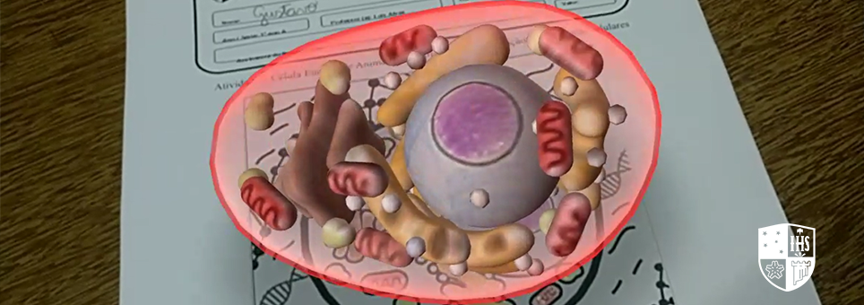Biologia: alunos utilizam realidade aumentada para estudar célula animal e vegetal