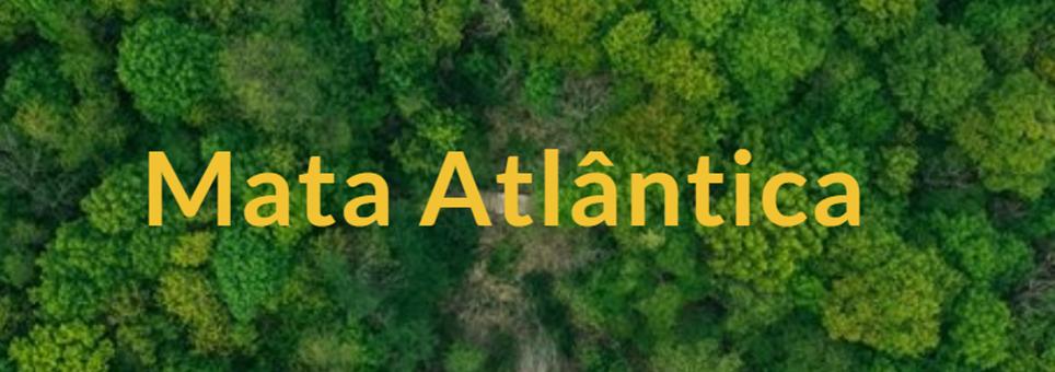 Estudantes criam campanhas de conscientização sobre a Mata Atlântica