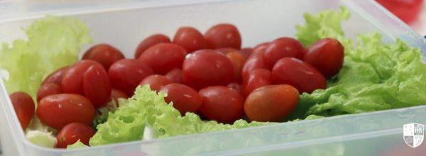 Alimentação escolar: qual a importância para o aprendizado?